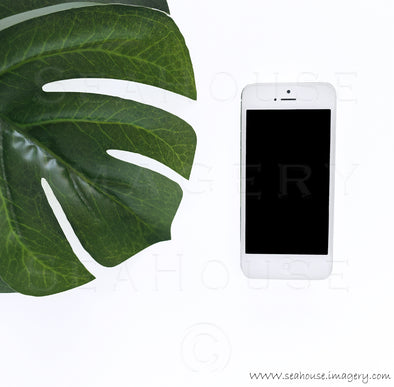 WM Phone and Monstera Leaf 8104 Square Size