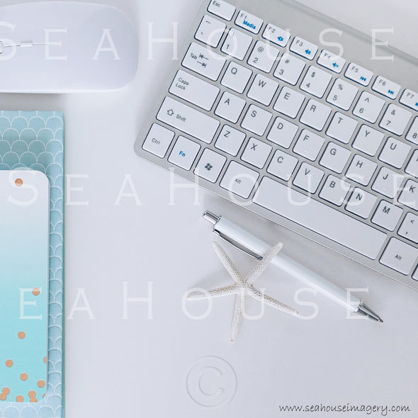WM Styled Desktop Modern Blue and White Starfish 1899 20 Square