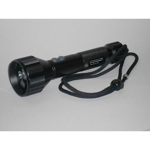 Flash-Corder Video Recording Flashlight - Chimney Cricket