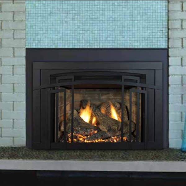 Madison Park 32 Direct Vent Insert (Traditional Style) – Chimney ...