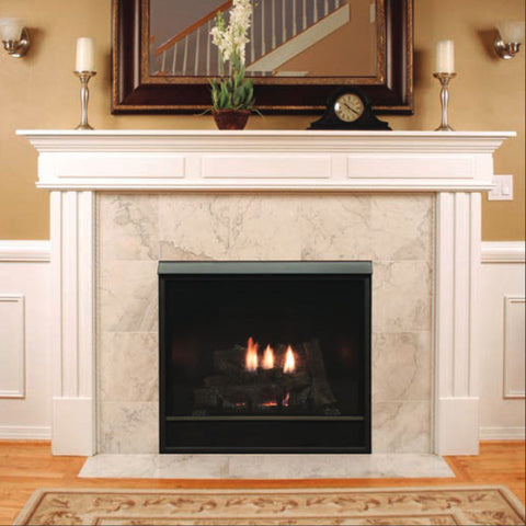 "Empire Tahoe Clean Face Direct Vent Fireplace Premium 42""(Blower and Light) - Chimney Cricket"