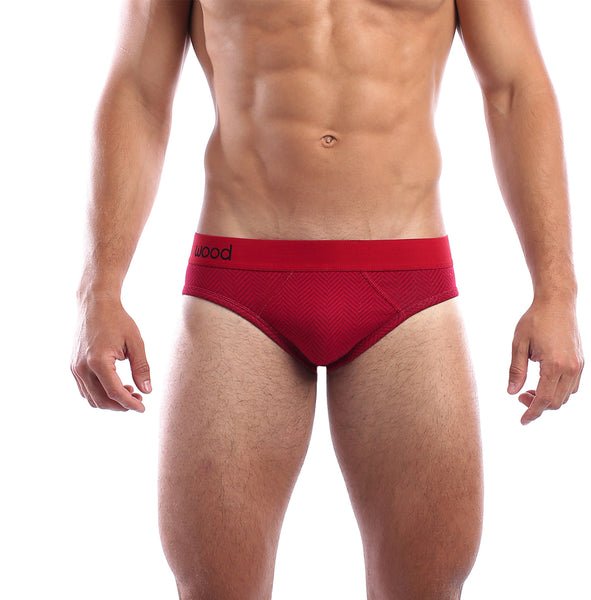 Hip brief from underwear designer Wood, offered by Whiskey Ginger. Modal red herring fabric. Soft, non-binding waistband. Front view, worn.