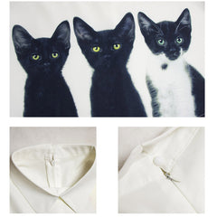 Cats Women's Chiffon Sleeve Shirts