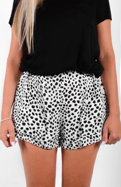 Dalmatian Shorts Close Up