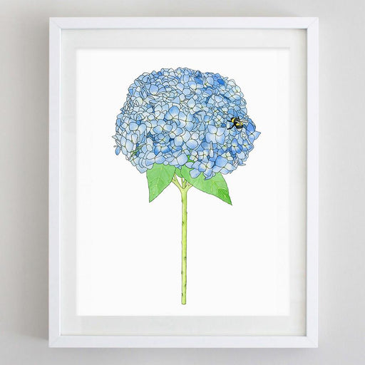 Hydrangea Floral Watercolor Print by Carly Rae