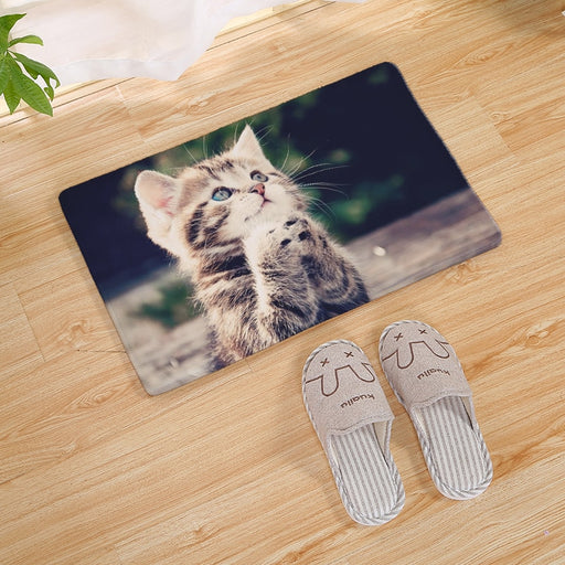 Cats & Kittens Collection - Doormats - 24 Styles