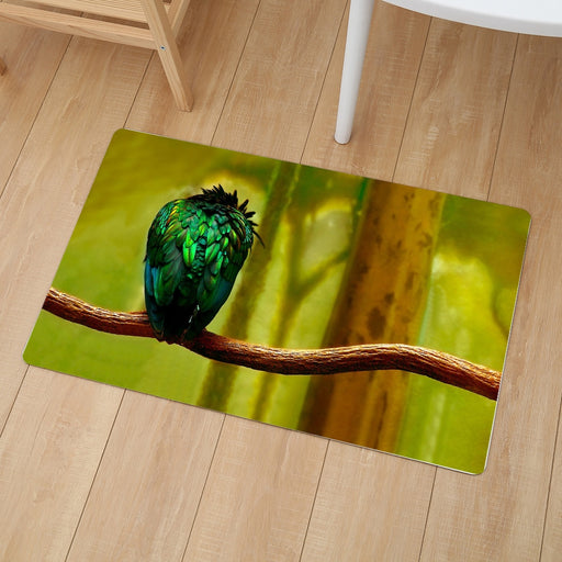 Animals Collection - Doormats - 25 Styles