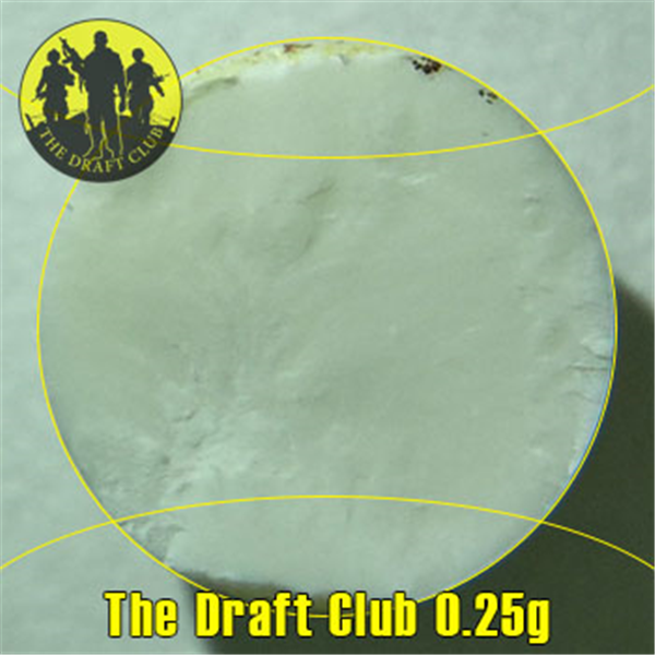 The Draft Club BB's 6mm 0.25g (3000 pcs) - Airsoft Imports