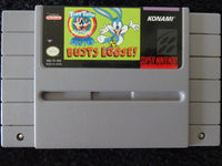 Tiny Toon Adventures Buster Bustin' Loose