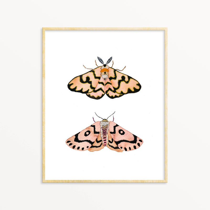 Snoogs & Wilde Art - 2 Moths ~ Art Print