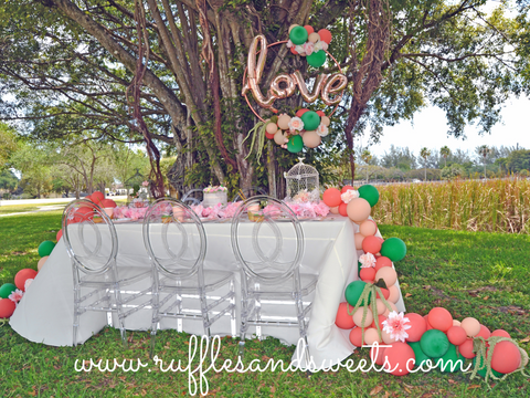 bircages, flowers, bridal shower, roses, balloon garland, ghost chairs, love balloon, banyan tree, miami, miami party supplies, party supplies