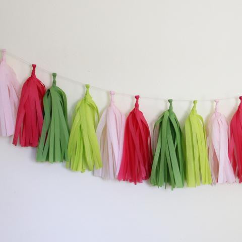 Tissue Paper Tassel Garland Kit - Preppy