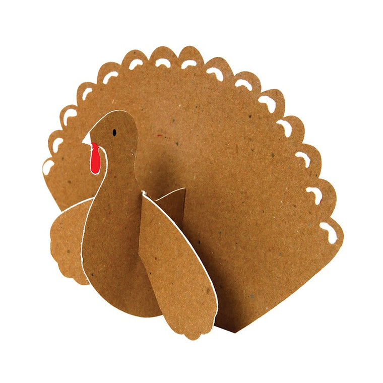 Kraft Turkey 10 Place Cards