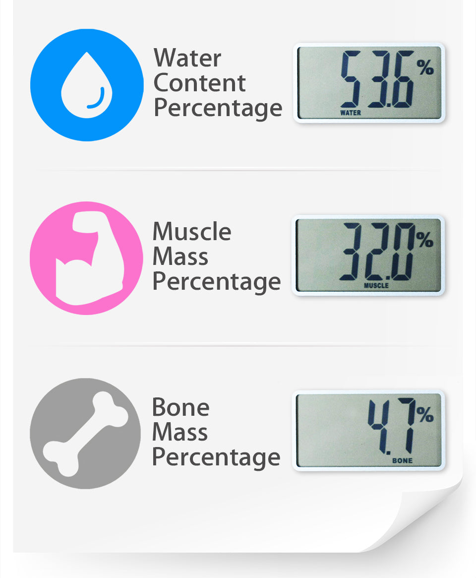 Flora Body Scale Water & Fat Analysis Water  Content  Percentage Muscle  Mass  Percentage Bone  Mass  Percentage