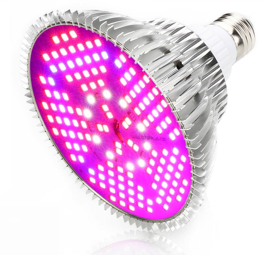 Image of   100 watt LED plante lys E27 - Fuld spektrum