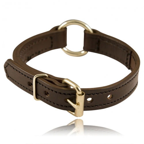 Center Ring Dog Collar Color: Black Length: 20