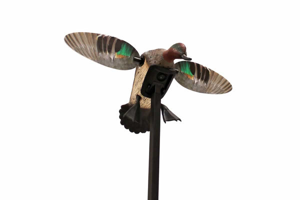 MOJO Outdoors Elite Series Green Wing Teal Duck Hunting Motion Decoy