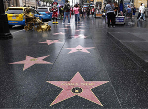 Removal of Trumps Walk of Fame Star