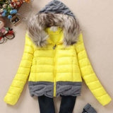 Women Winter Coat Cotton Padded Jacket Short Knitted Hood Fur Collars - Safaryworld.com - 3