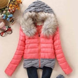 Women Winter Coat Cotton Padded Jacket Short Knitted Hood Fur Collars - Safaryworld.com - 5