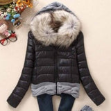 Women Winter Coat Cotton Padded Jacket Short Knitted Hood Fur Collars - Safaryworld.com - 4
