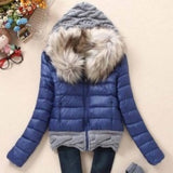 Women Winter Coat Cotton Padded Jacket Short Knitted Hood Fur Collars - Safaryworld.com - 2