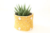 "Vintage African Textile Mudcloth Planter Set Yellow 4"" No P001 - ShopGoldenPineapple"