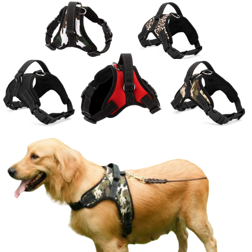 LIMITED EDITION! Soft Adjustable Dog Harness With Handle