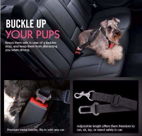 SAFETY DOG SEAT BELT - Life is complete with Dogs