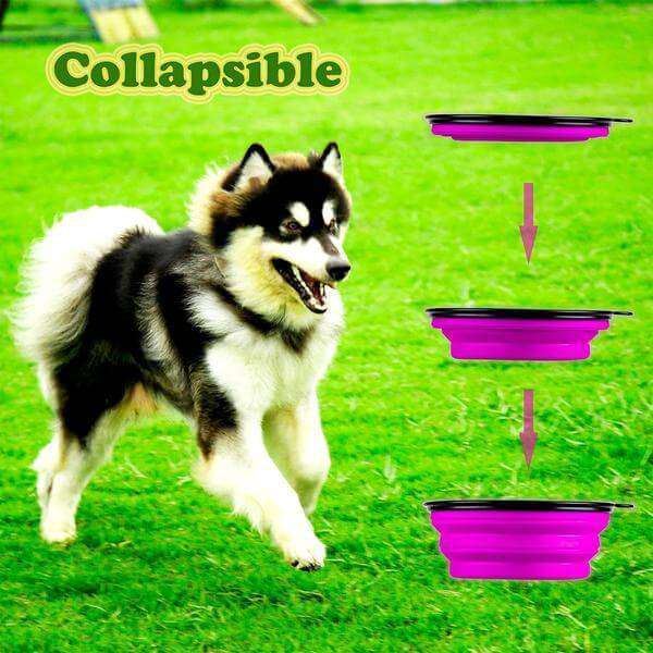 Collapsible Dog Travel Bowl - Life is complete with Dogs
