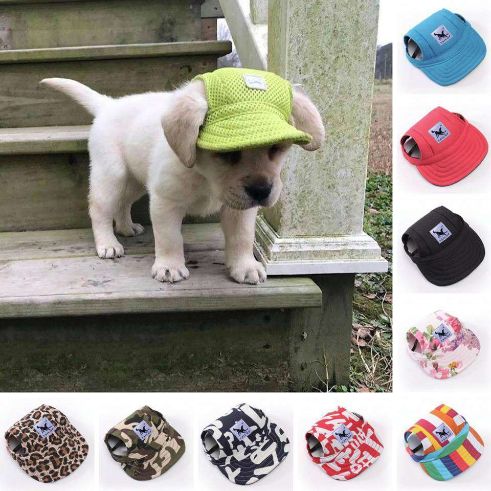 92b482b8405 Tail Up Summer Dog Hat - Life is complete with Dogs