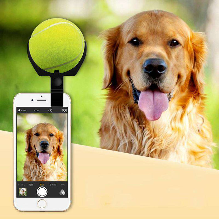 Selfie Ball for Pets - Life is complete with Dogs