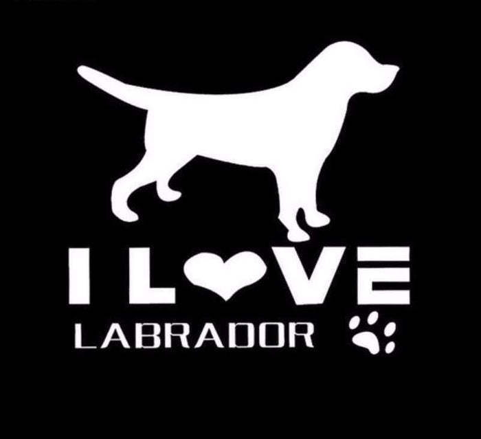 I LOVE LABRADOR Decals - Life is complete with Dogs