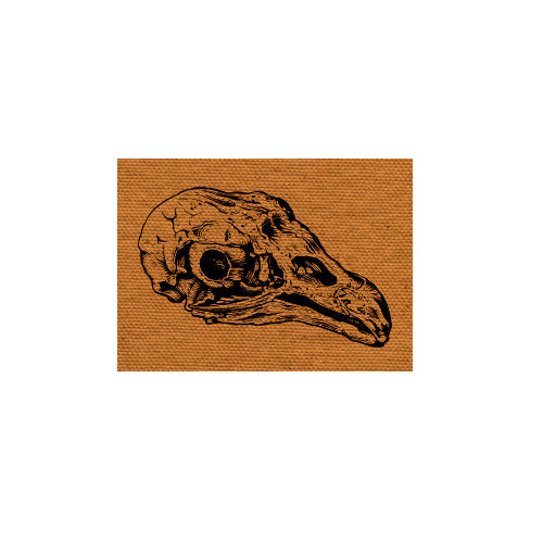Vulture Skull canvas patch