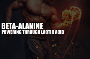 beta alanine effects