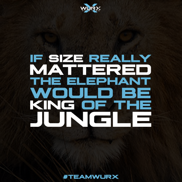 If size mattered, the elephant would be king of the jungle | 10 Motivational Quotes
