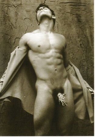 Frontal View - Gay Postcard
