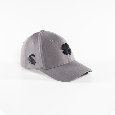 Michigan State Grey