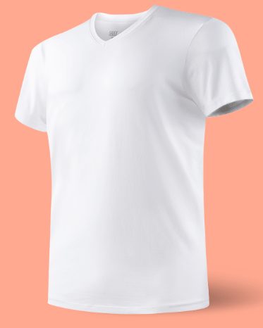 SAXX 3Six Five White V Neck T-Shirt