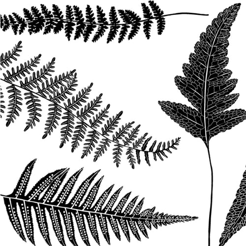 Ferns Black (Decal-009)