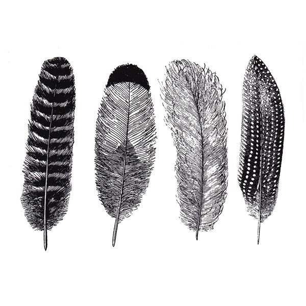 Large Feathers Black (Decal-018)