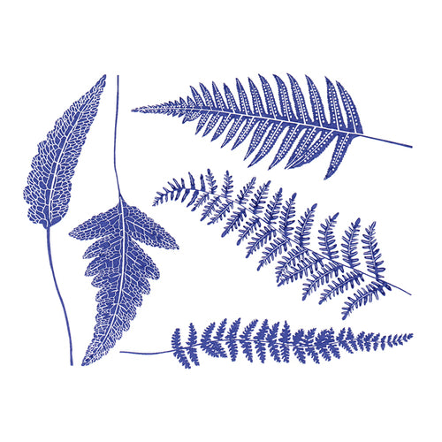 Ferns Blue (Decal-010)