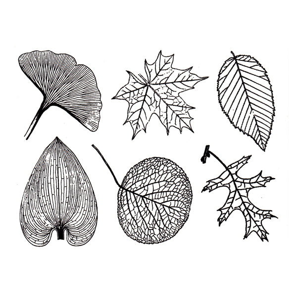 Large Leaves Black (Decal-052)