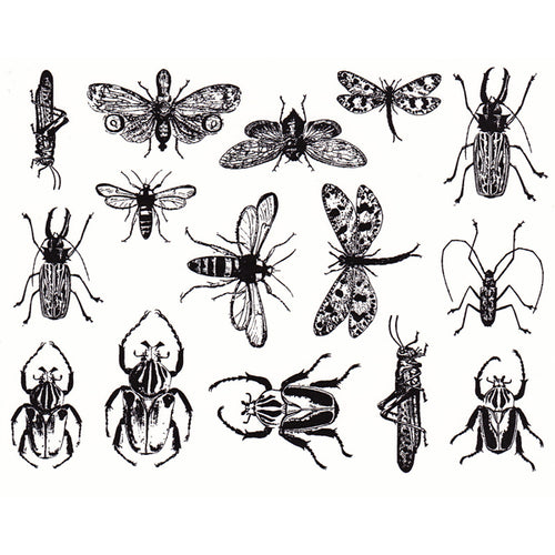 Mixed Insects Black (Decal-021)