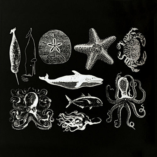 Mixed Sea Life White Mica (Decal-055)