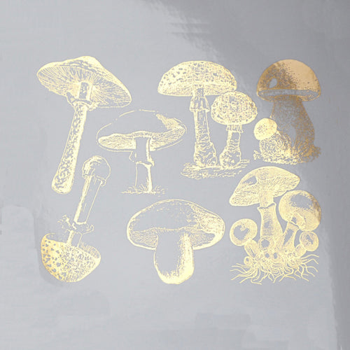 Vintage Mushrooms Gold Lustre (Decal-058)