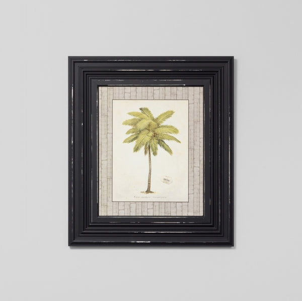 Coconut Palm Wall Art