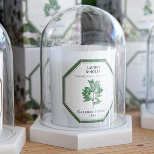 Carriere Freres Laurel Candle