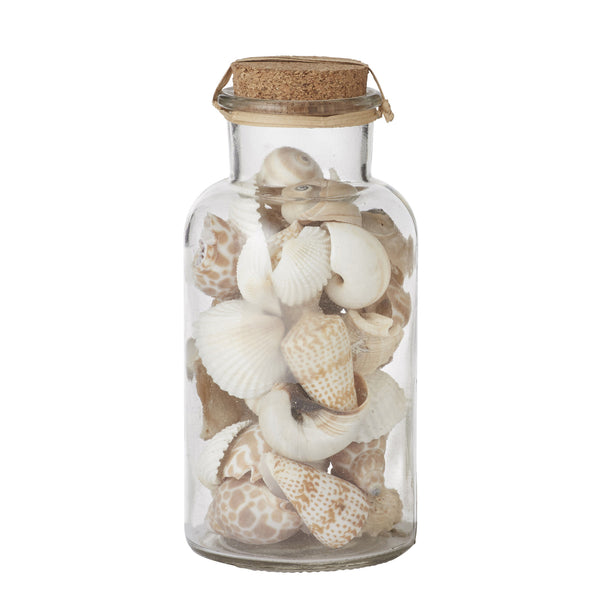 Decor Shells Small