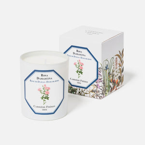 Carriere Freres Rose Candle